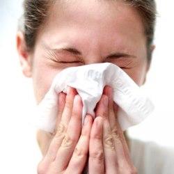 Поллиноз (или Сенная лихорадка), также известная как аллергический ринит