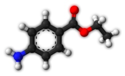 Бензокаин - анестетик местного действия