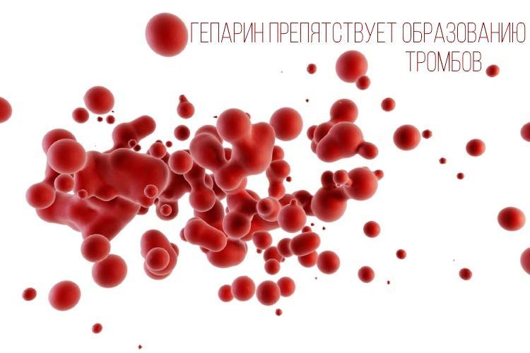 Гепарин исключает возможность образования тромбов