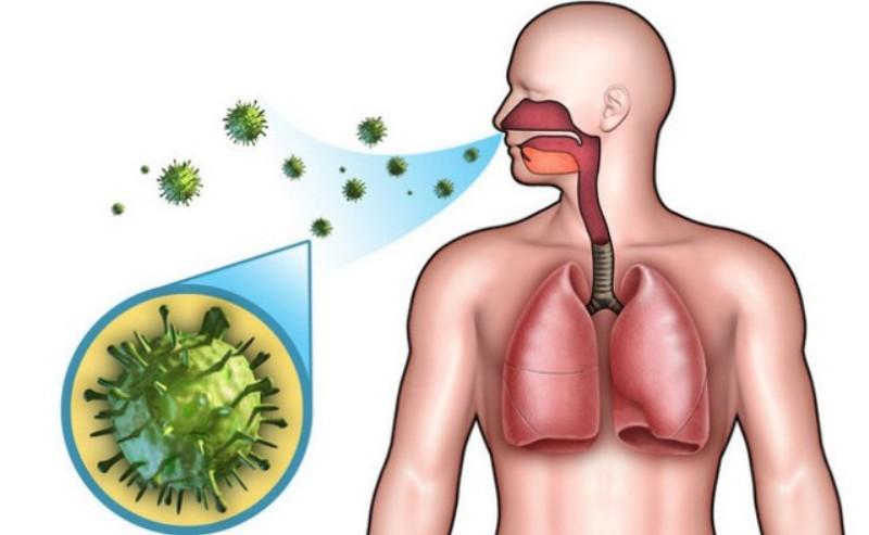 Микроорганизмы в носу