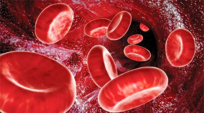Фибрин в кровотоке