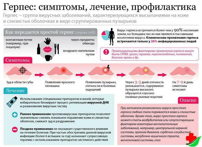 Мазь обладает противовирусными свойствами