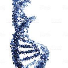 Клотримазол не позволяет грибку распространяться на здоровые клетки