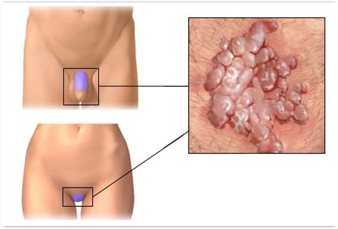 Рекомендации по соблюдению норм гигиены
