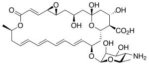 Натамицин - главное действующее вещество мази