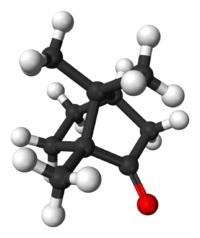Химическая и структурная формула камфорв