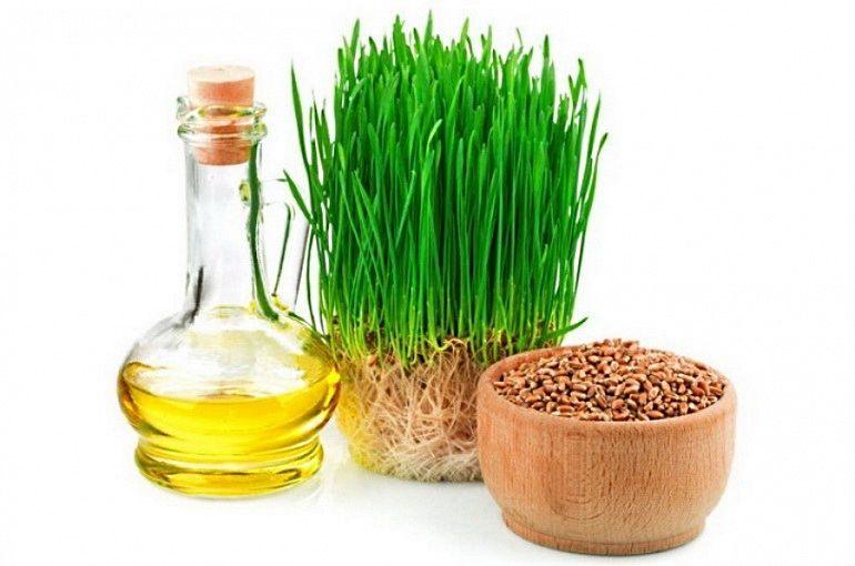 Масло зародышей пшеницы применяется в медицине и косметологии