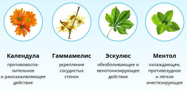 В состав мази Флеминга входят только натуральные ингредиенты на растительной основе