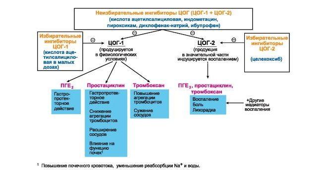 Принцип подавления циклооксигеназу 2 мазью Матарен