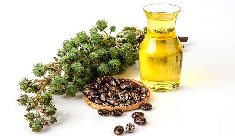 Касторовое масло получило широкое распространение в медицине и косметологии