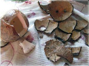 Как правильно изготовить кокосовое масло дома