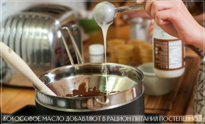 Кокосовое масло необходимо вводить в рацион питания постепенно
