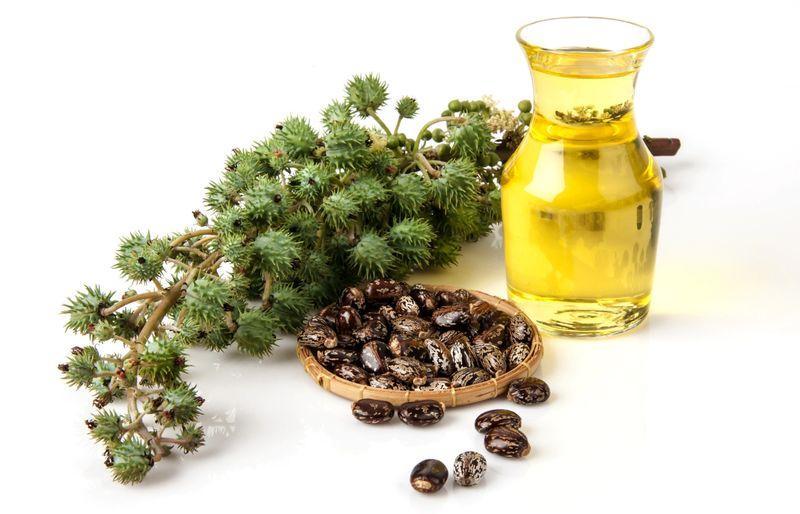 Касторовое масло - один из компонентов мази